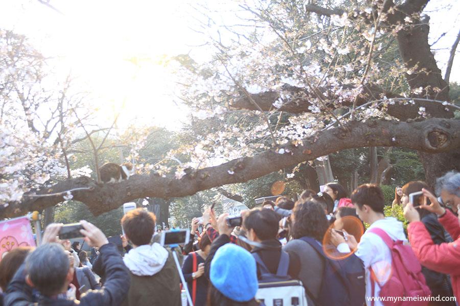Tokio przystanek 2: Ueno