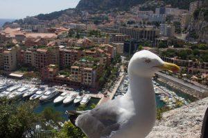 Księstwo Monako. Co zwiedzić? Gdzie spotkać sławnych ludzi?