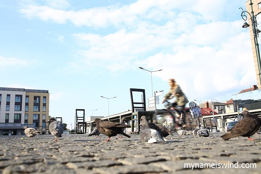 plac bohaterow getta zwiedzanie krakowa